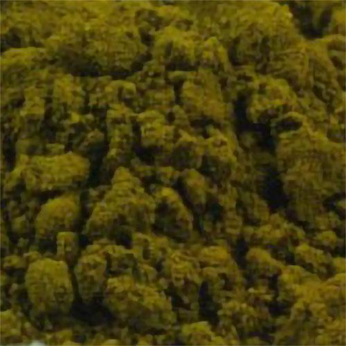 Sap Green Genuine-PG2